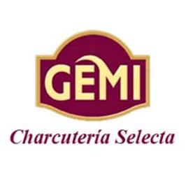 Logotipo Gemi
